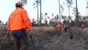 http://media.outdoorchannel.com/outdoorchannel/21/13/BestBirdHunting_TheSeasonwJM_Pheasant_125x71_2169472450_125x71.jpg
