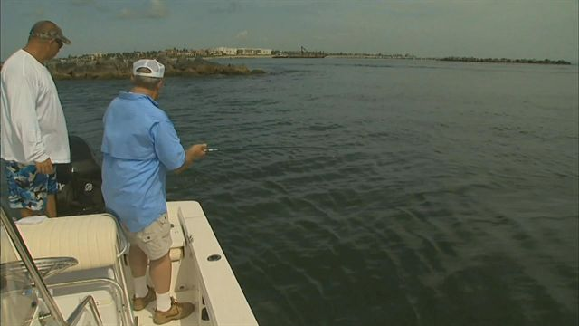 Flippin Stick - Bill Dance Saltwater