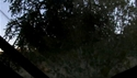 http://media.outdoorchannel.com/outdoorchannel/419/465/BoneCollector_37149_VatovilleReunion_910_NBH_WaddellOnDeck_1500k_125x71_125x71.jpg