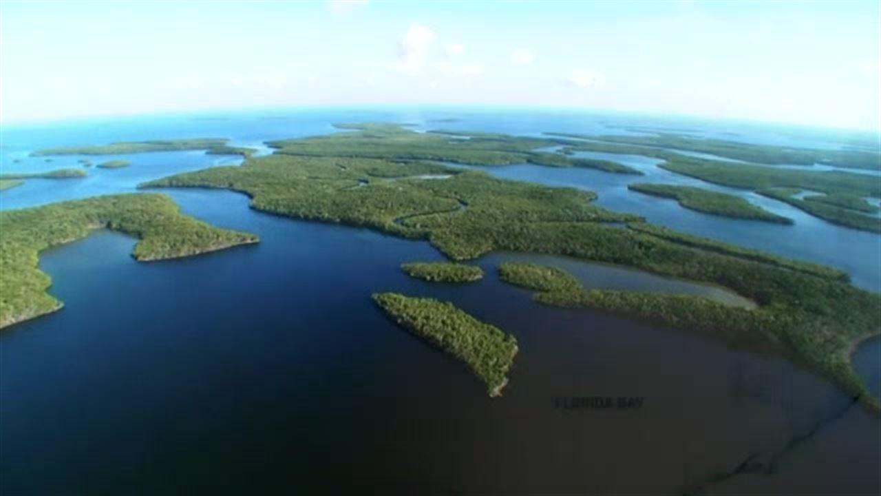 http://media.outdoorchannel.com/outdoorchannel/426/259/TSH_EP107_Everglades_Slammin_Tease_high_HTML5_1500k_16x9_1280x720_1280x720_680856131559.jpg