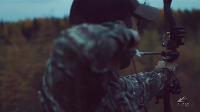 First moose for this Heartland Bowhunter