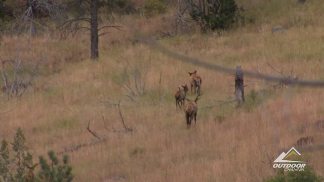 Preview the episode of RMEF Team Elk for the week of 5/23/16