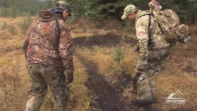 Preview the episode of Territories Wild with Tom Miranda for the week of