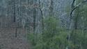 http://media.outdoorchannel.com/outdoorchannel/838/160/BMSlammer_125x71_1951570525_125x71.jpg